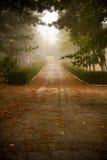 Туманный переулок Стоковое Фото