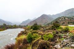 Туманный поток горы Стоковые Фотографии RF