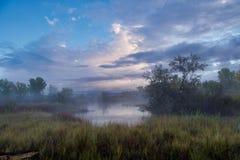 Туманный пруд акварели стоковые фотографии rf