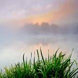 Туманный рассвет на озере Стоковые Изображения RF