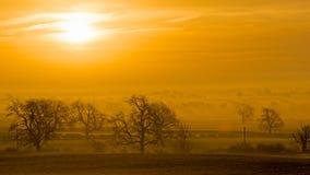 Туманный рассвет через деревья и поля Стоковая Фотография RF