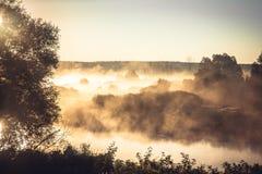 Туманный сельский ландшафт во время золотого часа на речном береге в раннем утре Стоковое Изображение RF