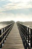 Туманный Стоковое Изображение