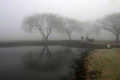 туманный moring стоковое фото rf