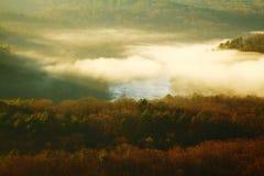 Туманный River Valley Стоковое Фото