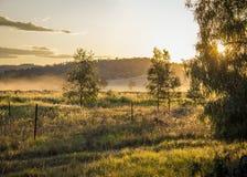 Туман вечера и светы света Стоковое Изображение