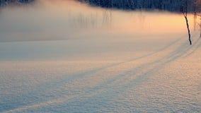 Туман вечера над покрытым Снег лугом видеоматериал