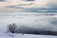 Туман в горах Стоковая Фотография RF