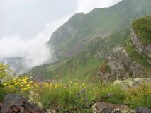 Туман в горах Стоковое Фото