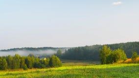 Туман в долине, промежуток времени утра акции видеоматериалы