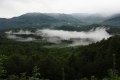 Туман в закоптелом национальном парке горы Стоковое фото RF