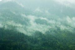 Туман в зеленых горах наклона стоковое фото rf