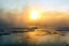Туман в зиме Стоковое Изображение RF