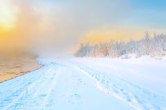 Туман в зиме Стоковое Изображение