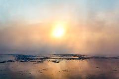 Туман в зиме Стоковые Фото