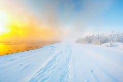Туман в зиме Стоковые Изображения