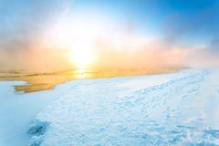 Туман в зиме Стоковое Фото