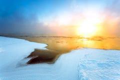 Туман в зиме Стоковые Фотографии RF
