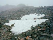 Туман вдоль Тихого океан следа гребня, коза трясет глушь, ряд каскада, Вашингтон Стоковое Изображение