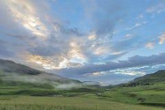 Туман в раннем утре Стоковые Фотографии RF