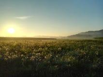 Туман в утре Солнце 2 Стоковые Фотографии RF