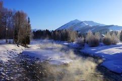 Туман в утре Стоковое Фото