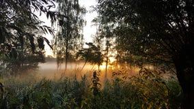Туман в утре Стоковая Фотография RF