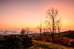 Туман горы утра Стоковое Фото