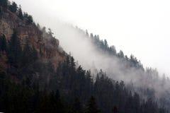 Туман горы стоковое фото rf
