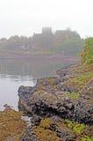 туман замока Стоковое Изображение