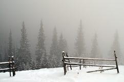 Туман зимы Стоковая Фотография RF