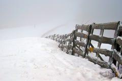 Туман или помох тумана Стоковое Фото