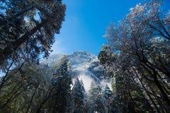 Туман и снег на деревьях и скалах национального парка Yosemite, Калифорнии в зиме во время восхода солнца Стоковое фото RF