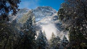 Туман и снег на деревьях и скалах национального парка Yosemite, Калифорнии в зиме во время восхода солнца Стоковые Фото