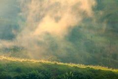Туман и солнечный свет производят эффект зеленый холм горы, Таиланда Стоковое Изображение RF