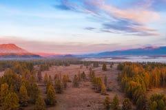 Туман на зоре в горах Стоковая Фотография