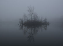 Туман на озере на зоре Стоковые Изображения