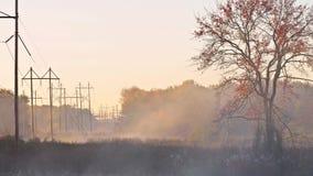 Туман на озере, съемка утра восхода солнца сток-видео