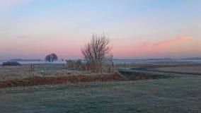 Туман над полем Стоковое Изображение RF