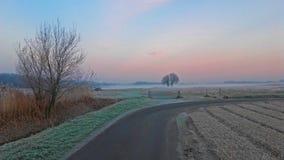 Туман над полем Стоковое Фото