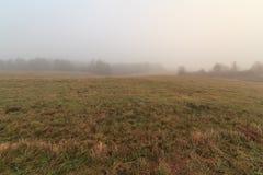 Туман на поле осени Стоковые Фотографии RF
