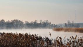 Туман на реке стоковое фото rf