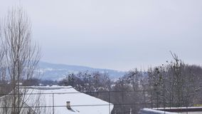 Туман неба деревьев гор ландшафта взгляда акции видеоматериалы