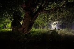 Туман ночи в деревне загадочно лунный свет Освещать вверх по качанию около дерева в дворе Свет от задней стороны деревьев Стоковые Фотографии RF