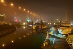 Туман ночи False Creek, Ванкувер Стоковое Изображение RF