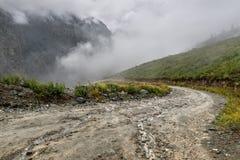 Туман дождя пропуска гор дороги Стоковое Фото
