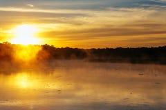 Туман осени в утре на реке Стоковые Изображения RF