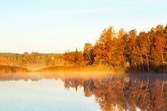Туман осени утра Стоковое фото RF