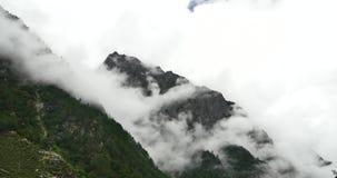 туман поднимая в утро, деревья горы 4k тумана, Bomi County, Тибет видеоматериал