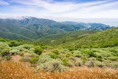 Туман покрывая зеленые холмы и долины парка штата ранчо McNee горы Montara, Калифорния стоковое изображение rf